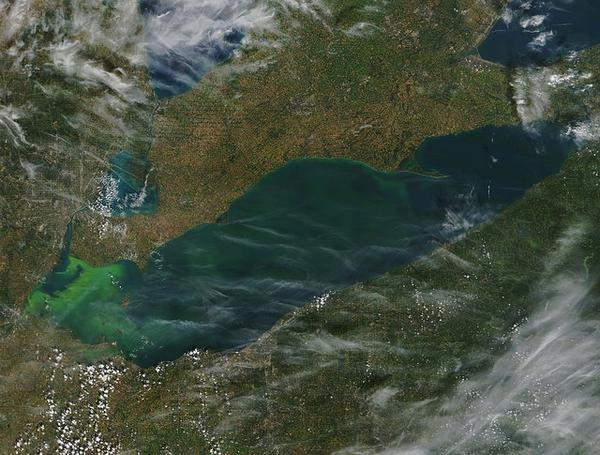 Lake Erie harmful algal blooms, Sept 2017 (satellite photo via NOAA GLERL on Flickr)