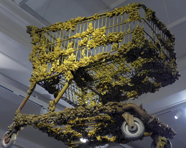 Shopping cart coated in zebra mussels, Carnegie Museum of Natural History, We Are Nature exhibit, Nov 2017 (photo by Kate St. John)