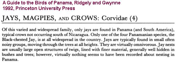 crow text from Guide to the Birds of Pnama, Ridgely and Gwynne