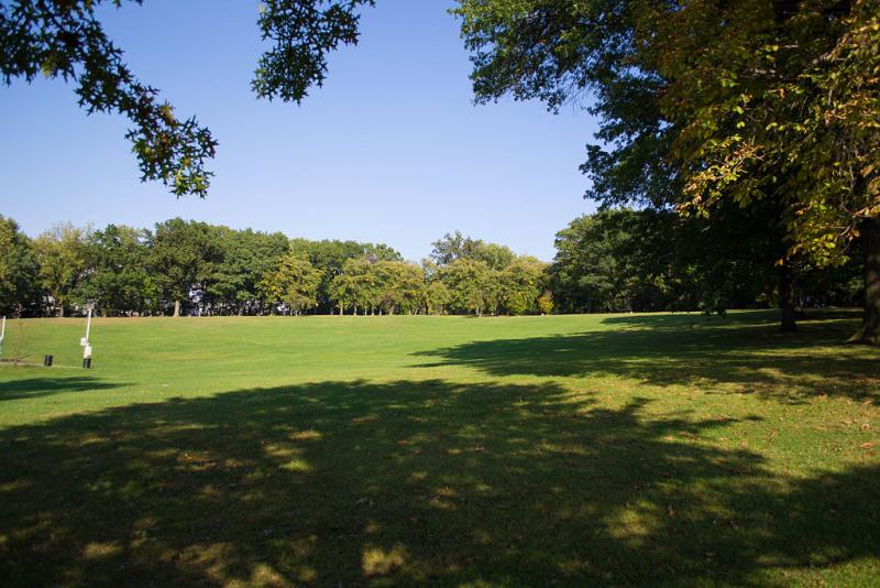 Schenley Park, Flagstaff Hill in summer (photo from Wikimedia Commons)