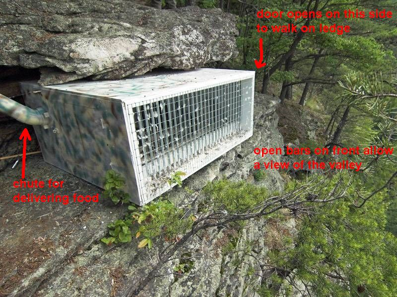 Peregrine hack box at New River Gorge National River (photo in public domain from NPS, annotated by Kate St. John)
