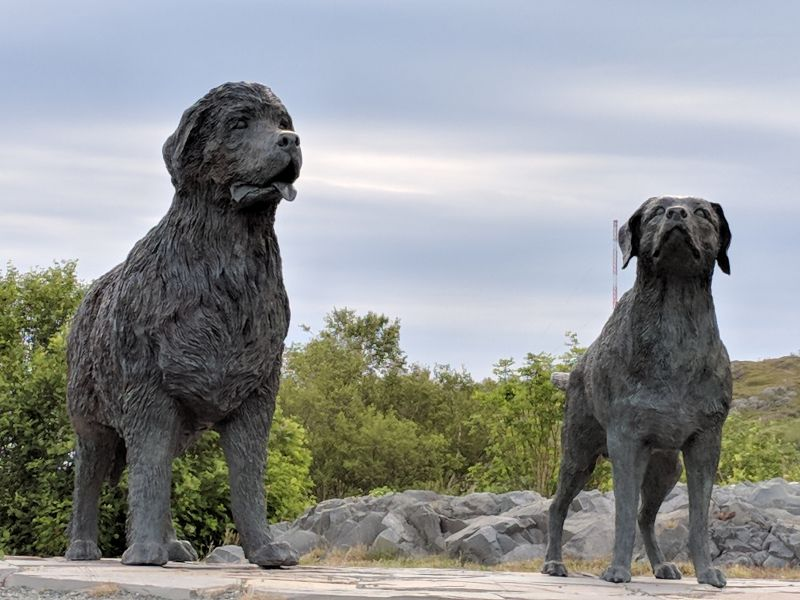 Statue honoring Newfoundland and Labrador retriever dogs, Signal Hill, St. John's, NL (photo by Kate St. John)