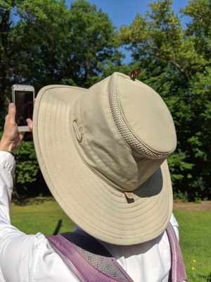 Trying to take a photo of the skipper on my hat, 29 July 2018 (photo by Peter Bell)