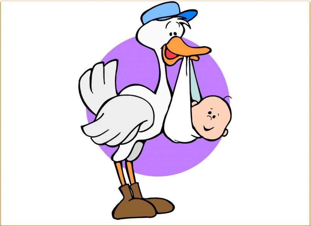 Which Stork Brings Babies Outside My Window